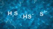 Meten van waterstofsulfide concentratie in een pH-vluchtige vloeistof (bijvoorbeeld water) is veel moeilijker dan in een medium zoals aardgas.